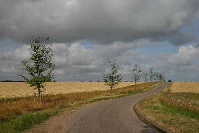 Minor road to Chrishall Grange
