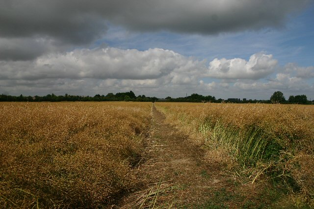 Footpath to Melbourn