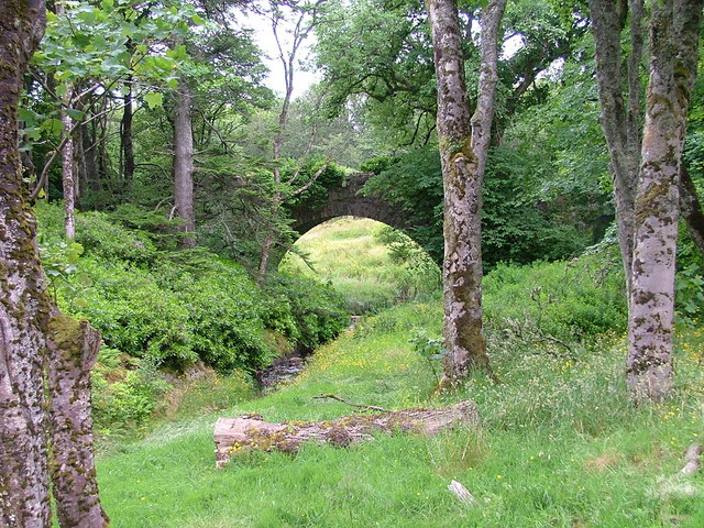 Bridge at Creed Lodge