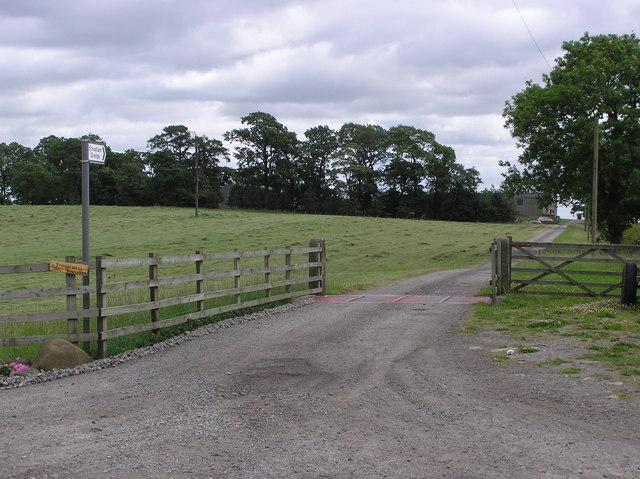 Farm road to Streatlam Grange