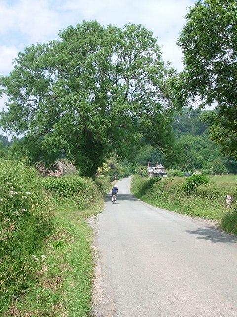 The lane towards Hayton's Bent
