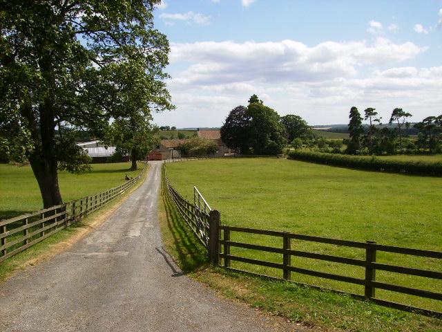 Driveway to Beadlam Grange