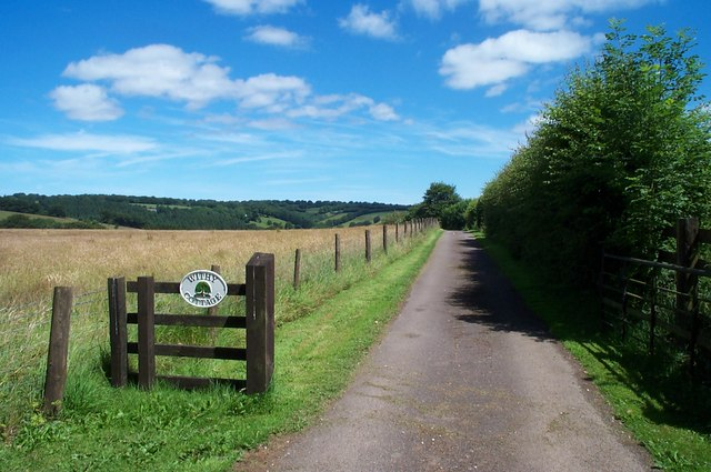 Bridleway to Withy Cottage