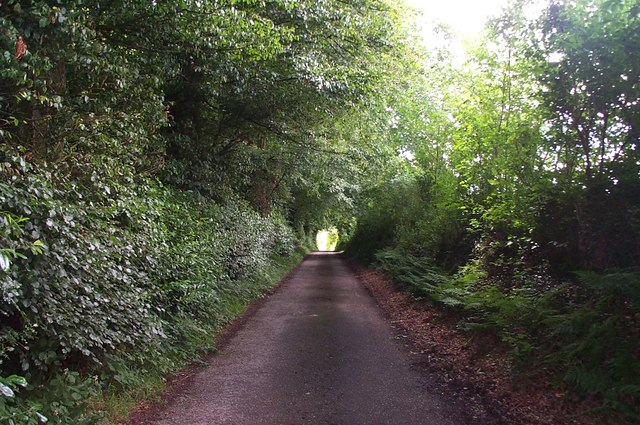 Lane to Upton Farm