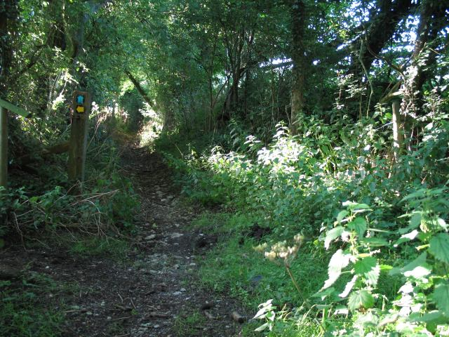 Bridleway and Roman road