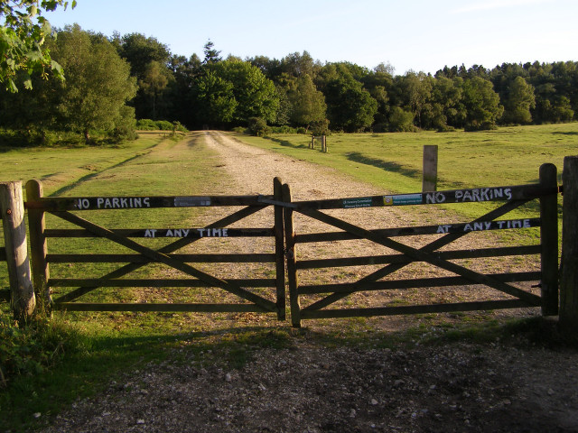 Gates at the end of Twiggs Lane End, New Forest
