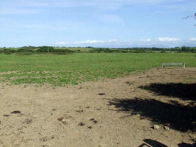 Field near to Tre Angharad