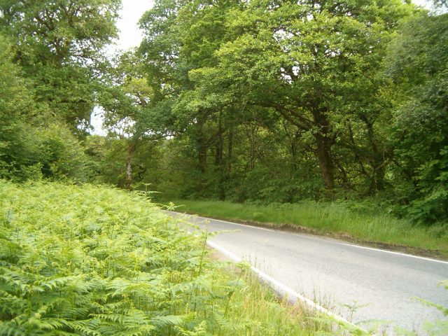 The B845 in Glen Nant