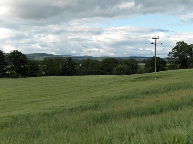 Farmland, Strageath