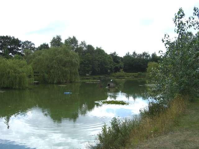 Fishing pond at Home Farm