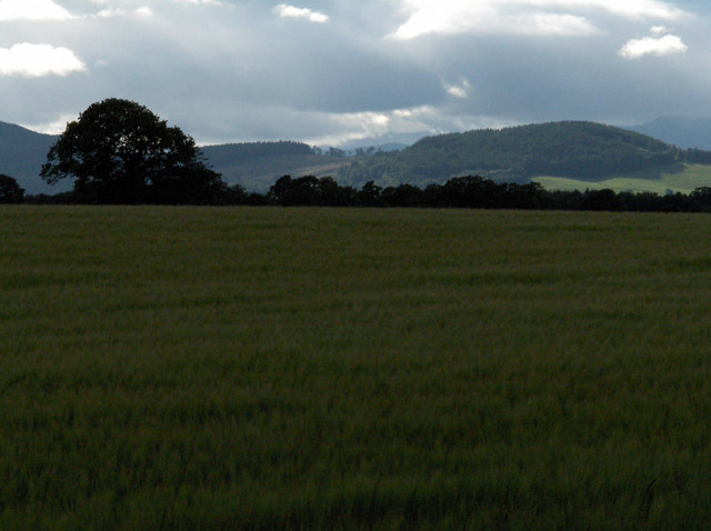 Farmland, Strageath