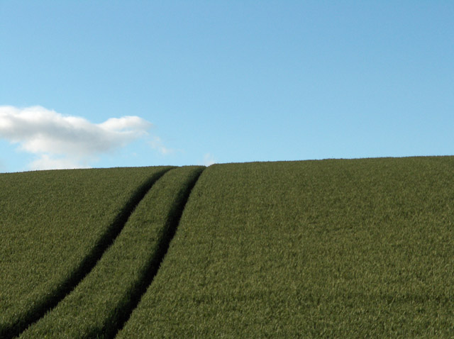 Farmland, Ladyston