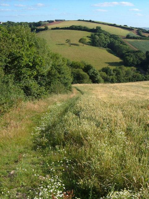 Twiscombe