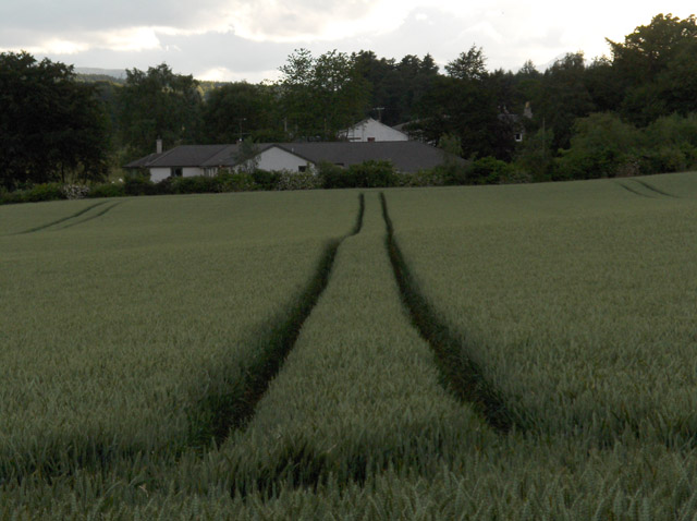 Farmland, Caerlaverock