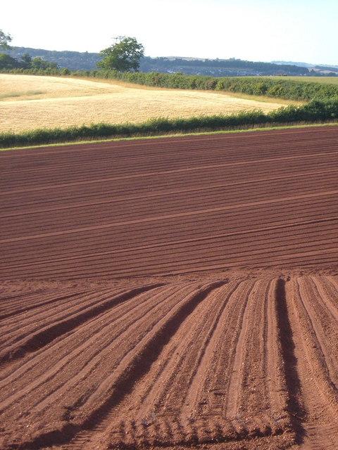 Freshly ploughed at Eastacott