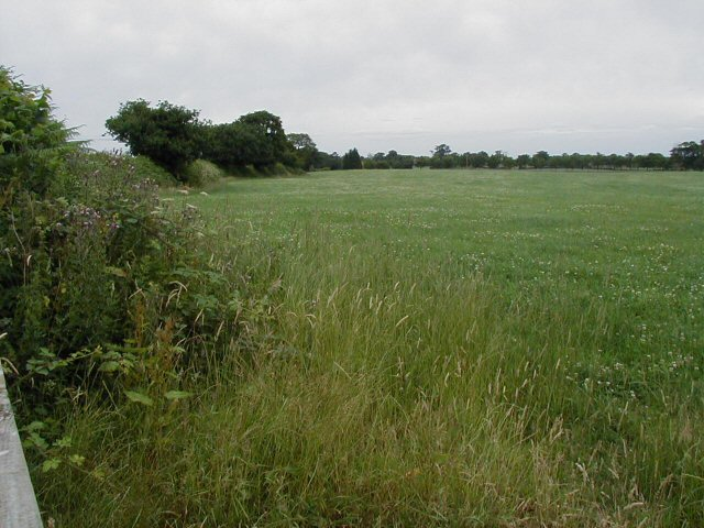 Shropshire field