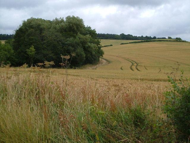 View near Harpole Hill Farm