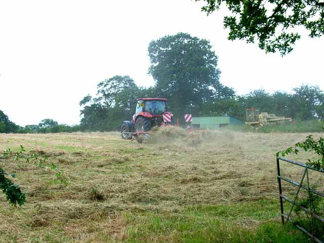 Haymaking near Doveridge