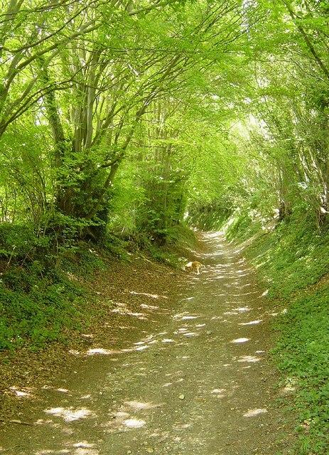 Husseys Lane, Well, Long Sutton