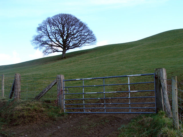 Farm Gate, Near Red House, Trefeglwys