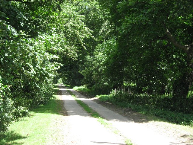 The Driveway from Turnham Hall