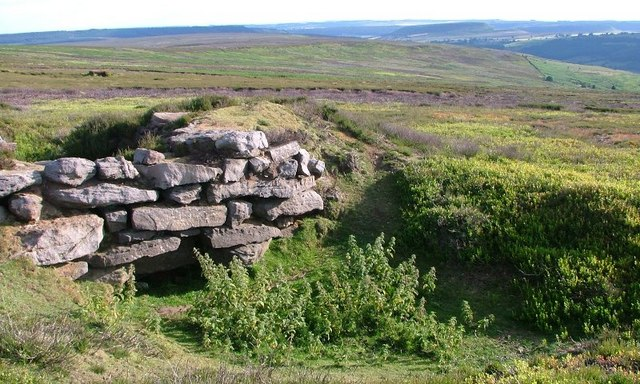 Unknown Structure, Bilsdale East Moor