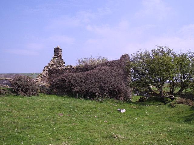 Blaen-waun: Cotoneaster-covered ruin