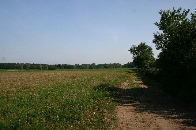 Footpath to Wordwell Church