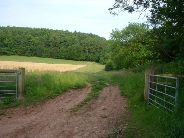 Field near Tugford