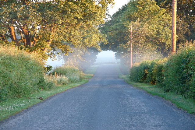 Early morning mist hangs over road at Luffness Mains