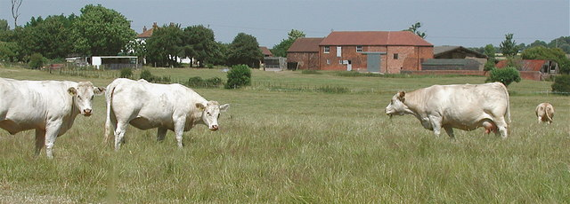 Ryehill House Farm