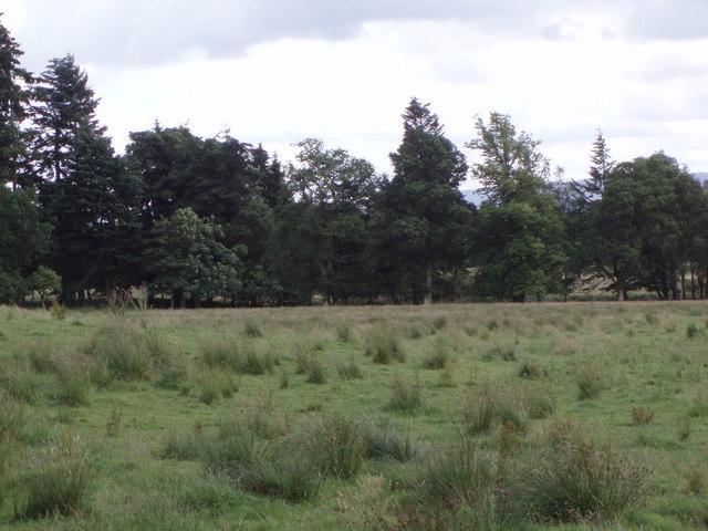 Farmland south of A873