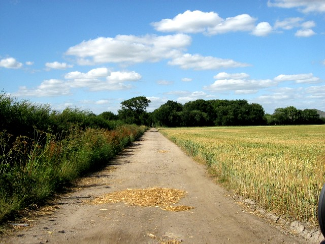 The Unpaved Track to the A163