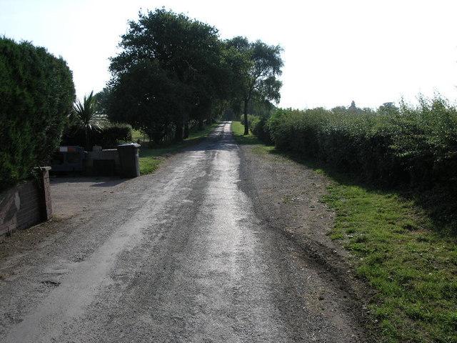 Lane and Path