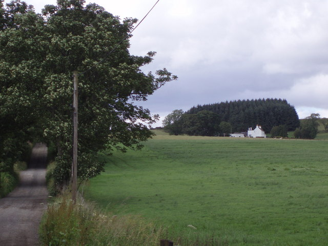 Farm track to Union Farm