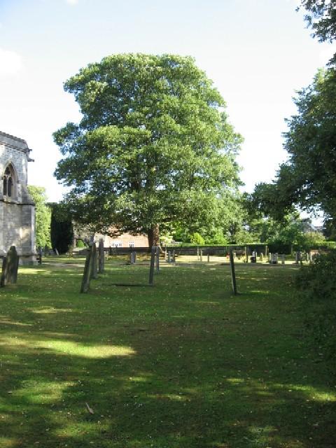 The Churchyard of Escrick Parish Church