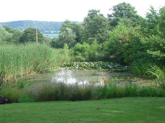 Jessamine Cottage Garden