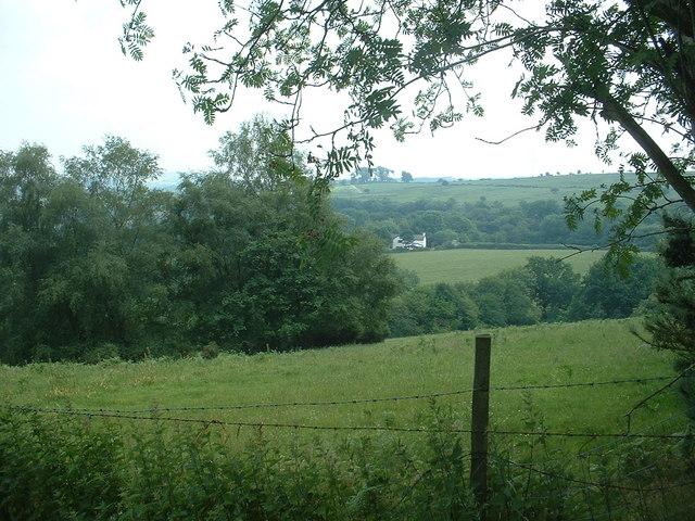 Farmland, looking towards Tyddyn Uchaf