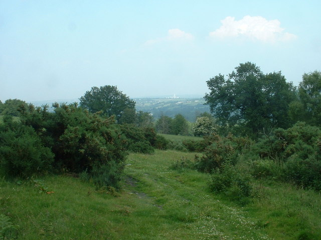 Farmland, looking towards Buckley