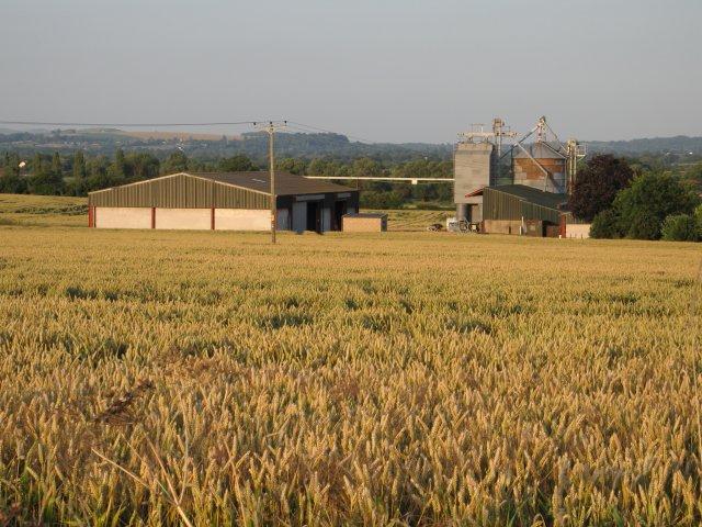 Spiers Piece Farm