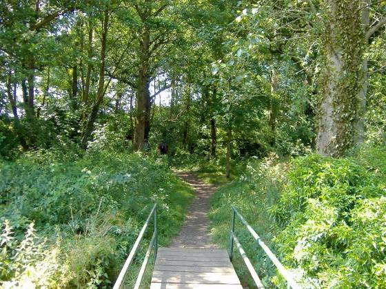 Crossing Basford Brook