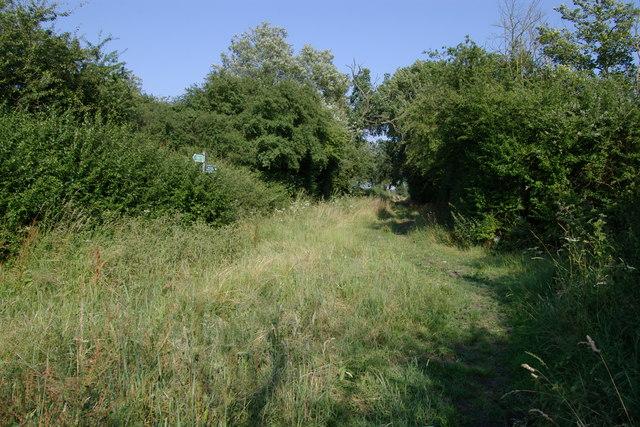 Bridle Path off Westfield lane