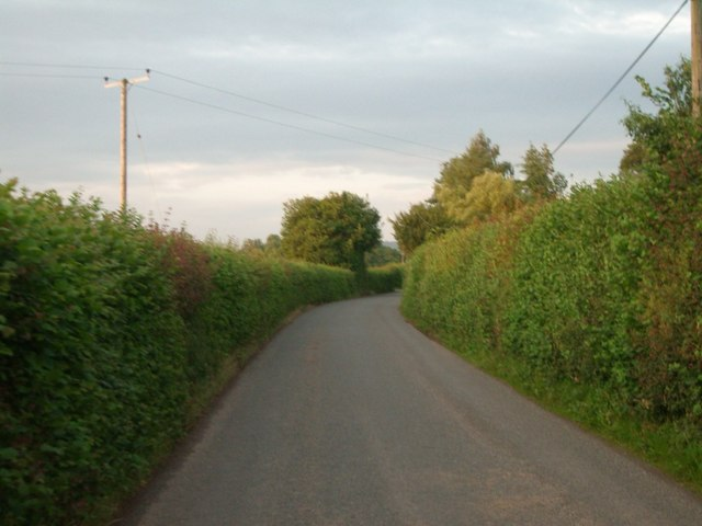 The lane between Little Sutton and Great Sutton