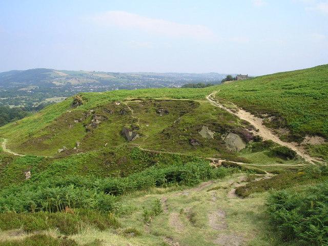 Burley Moor