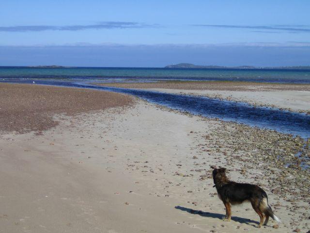 Beach at Gress