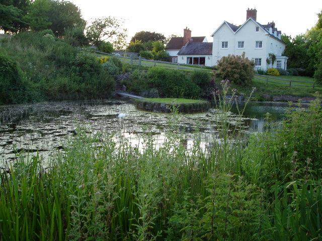 Duncton Mill