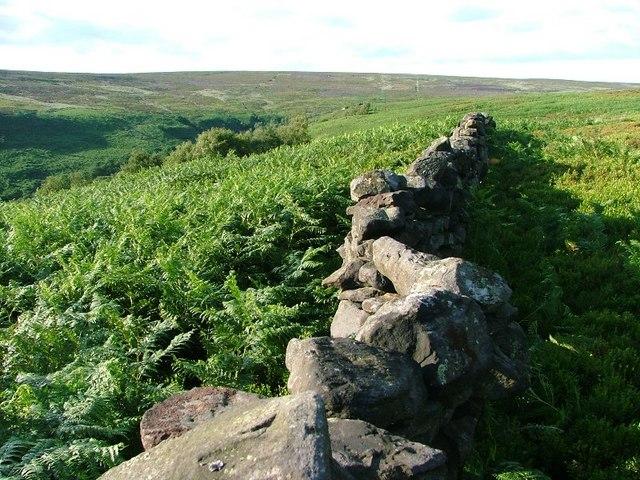 Moor Wall, Tarn Hole
