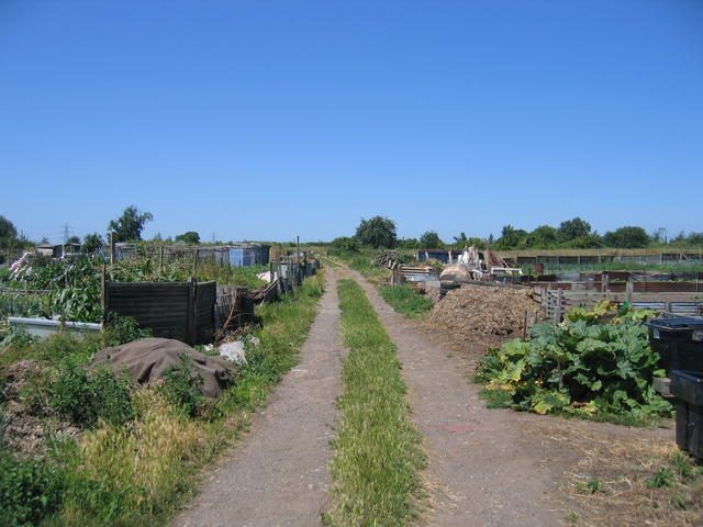 Shilton Lane Allotments