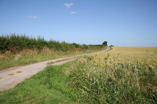 Lane to Scrub Holt Farm
