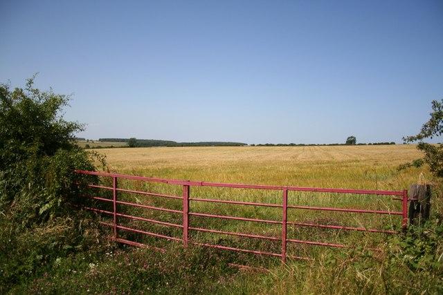 Farmland near Swallow
